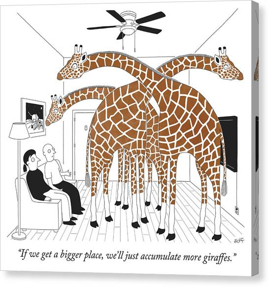 More Giraffes Canvas Print