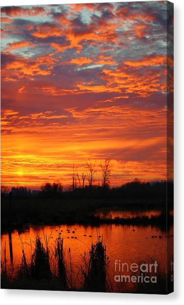 Canvas Print - More Sunrise Reflections by Nick Gustafson