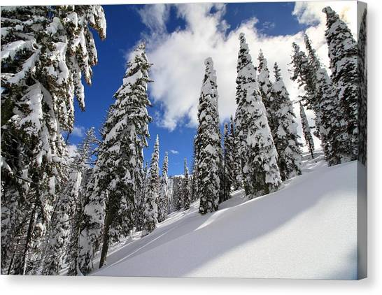 Boise National Forest Canvas Print - Mores Creek Summit Record Snow Fall by Ed  Riche