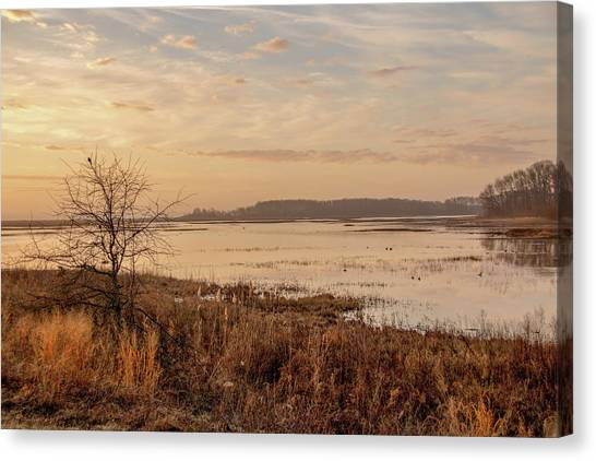 Canvas Print featuring the photograph Morning At Boombay Hook by Kristia Adams