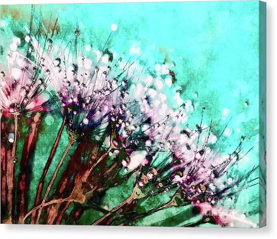 Morning Dew On Dandelions Canvas Print