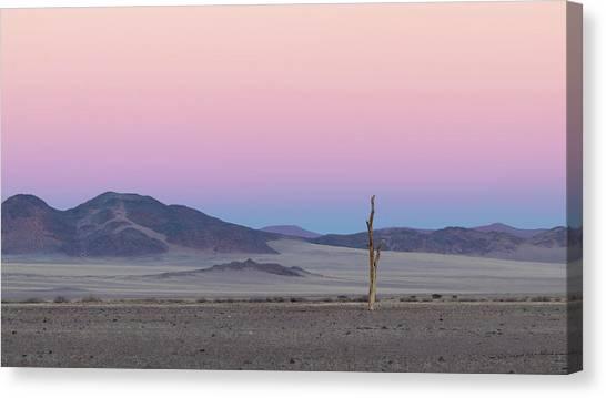 Morning In The Desert Canvas Print