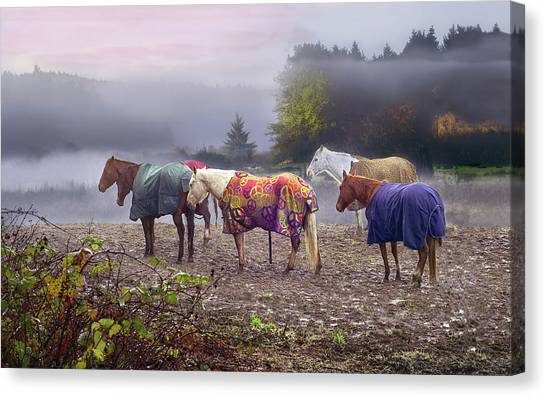 Morning Mudders Canvas Print