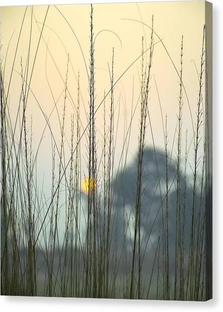 Winter Canvas Print - morning Star by Ravi Bhardwaj