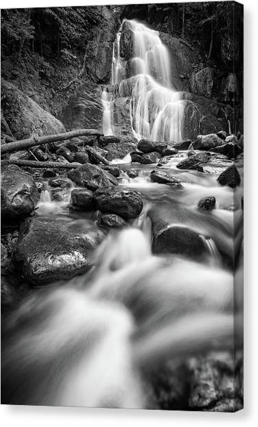 Mossy Forest Canvas Print - Moss Glen Falls And Deer Hollow Brook In Black And White by Rick Berk