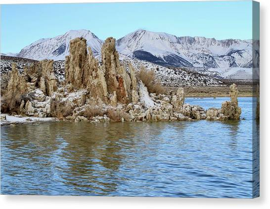 Mount Dana At Dawn  Mono Lake Canvas Print
