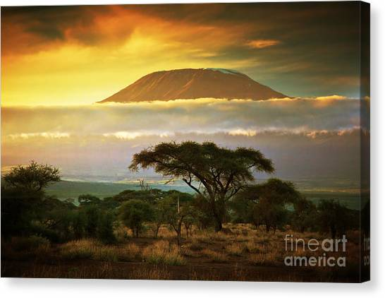 Bush Canvas Print - Mount Kilimanjaro And Clouds Line At by Photocreo Michal Bednarek