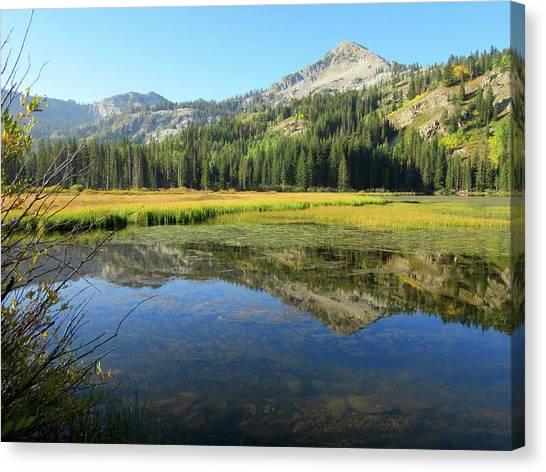 Mount Millicent Reflection Canvas Print