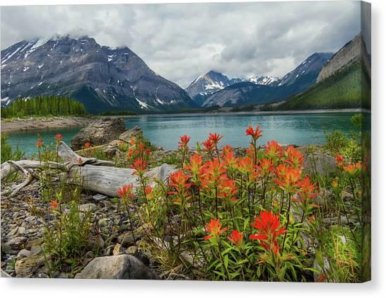 Mountain Flora Canvas Print