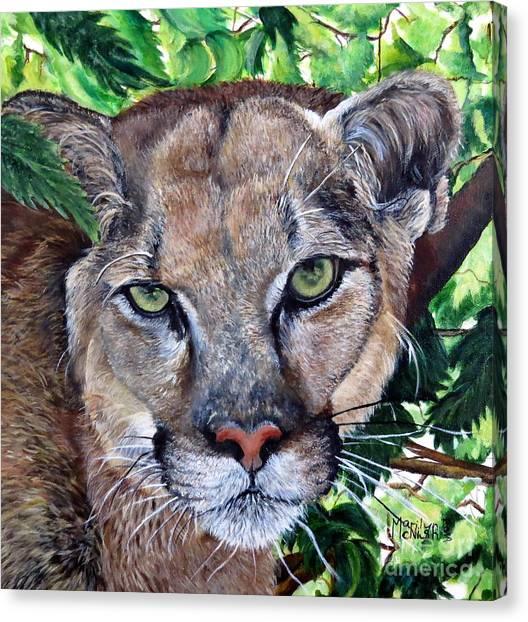 Mountain Lion Portrait Canvas Print
