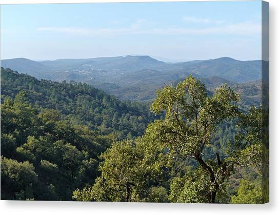 Mountains Of Loule. Serra Do Caldeirao Canvas Print