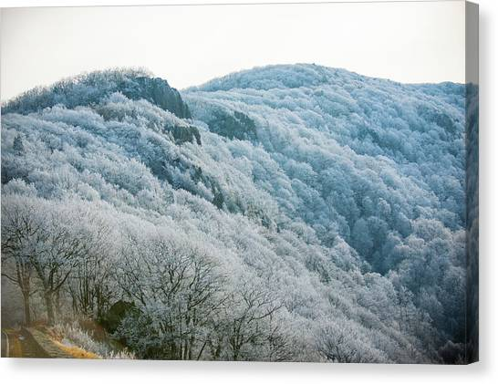 Mountainside Hoarfrost Canvas Print