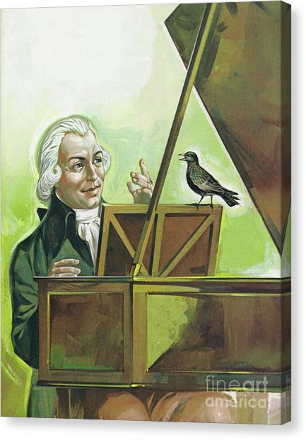 Harpsichords Canvas Print - Mozart And The Starling by Angus McBride