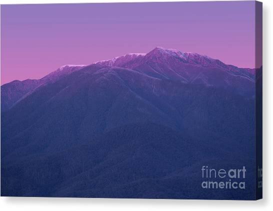 Alps Canvas Print - Mt Bogong by Ivan Krpan