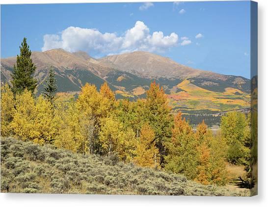 Mt. Elbert Autumn Canvas Print by Aaron Spong
