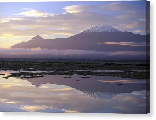 Mt.kilimanjaro Sunrise Amboseli Kenya Canvas Print by Stan Osolinski