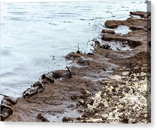 Muddy Sea Shore Canvas Print