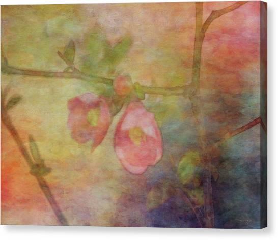 Muted Primaries 8844 Idp_2 Canvas Print