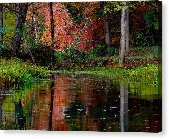 Canvas Print featuring the photograph My Secret Place by Kristi Swift
