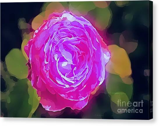 Canvas Print - Mystic Rose by Mindy Newman