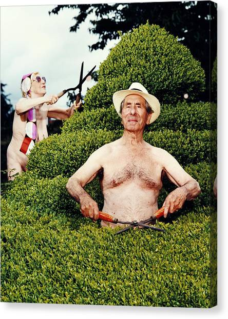 Naked Mature Couple Trimming Hedge, Man Canvas Print by Chris Craymer