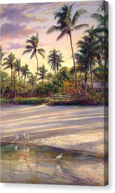 Coconut Canvas Print - Naples Sunrise by Laurie Snow Hein