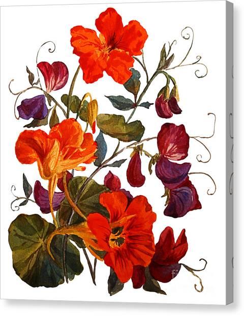 Realistic Canvas Print - Nasturtium And Sweet Peas  Flowers by Yulia Krasnov