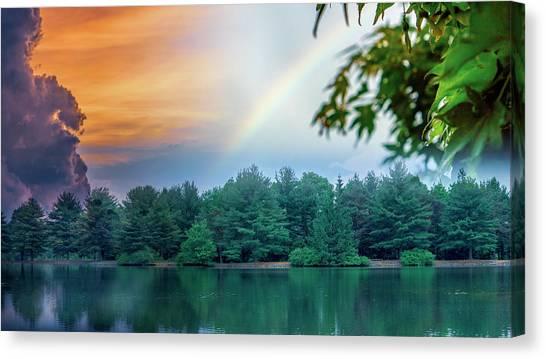 Natural Composites Canvas Print