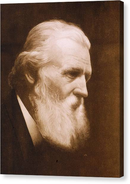 Naturalist John Muir Canvas Print by Hulton Archive