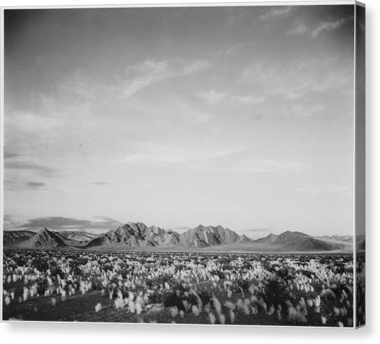 Near Death Valley National Monument Canvas Print