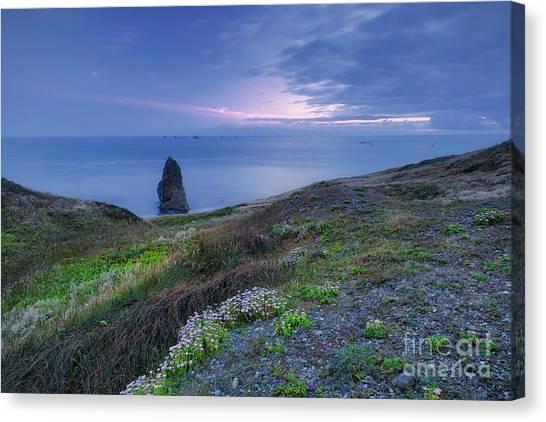 Southern Rock Canvas Print - Needle Rock At Sunset by Masako Metz