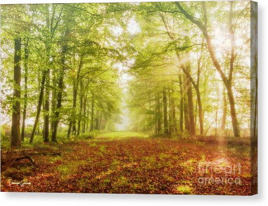 Neither Summer Nor Winter But Autumn Light Canvas Print