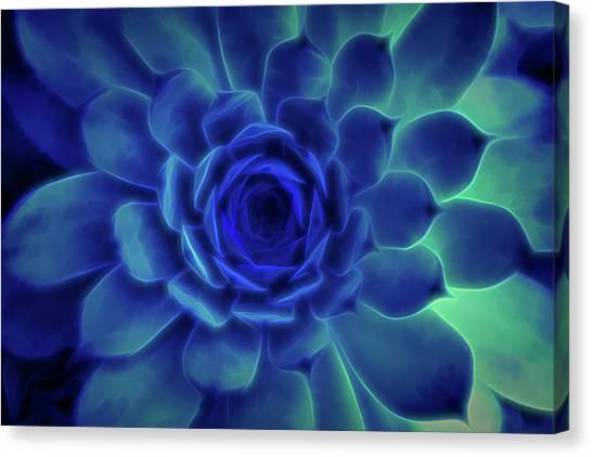 Neon Blue Sempervivum Canvas Print