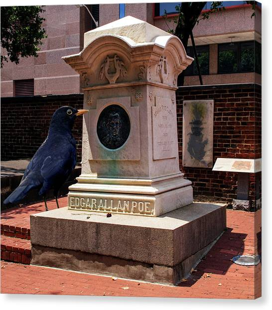 Canvas Print featuring the photograph Nevermore Quoth The Raven by Bill Swartwout Fine Art Photography