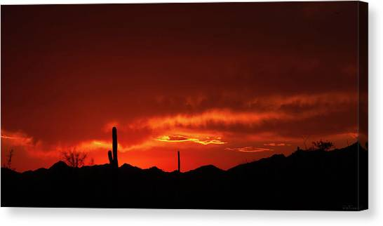 Canvas Print featuring the photograph New Beginnings by Rick Furmanek