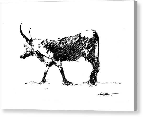 Nguni 01 Canvas Print