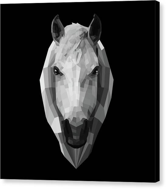 Lynx Canvas Print - Night Horse by Naxart Studio