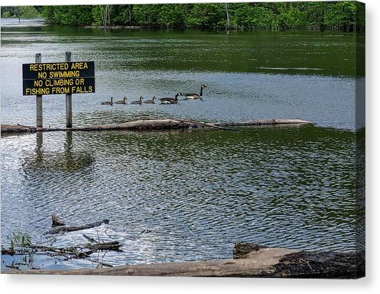 Canvas Print featuring the photograph No Swimming by Kristi Swift