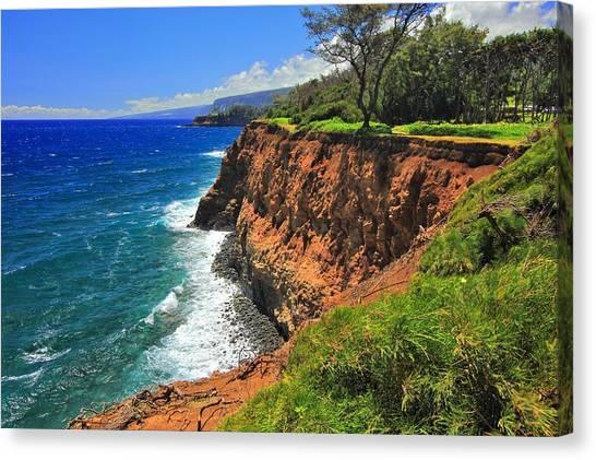 North Hawaii View Canvas Print