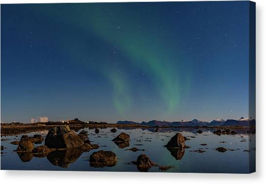 Northern Lights Over A Swamp  Canvas Print