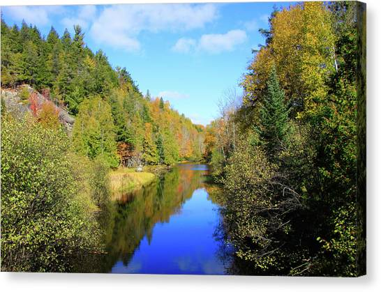 Northwoods Reflection Canvas Print