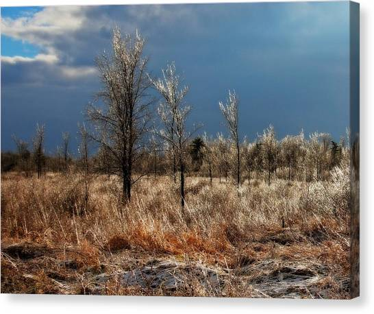 Canvas Print featuring the photograph November Icing Magical Light by Tatiana Travelways