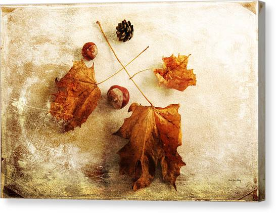 Canvas Print featuring the photograph November Mood by Randi Grace Nilsberg
