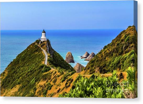 Nugget Point Lighthouse, New Zealand Canvas Print