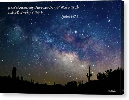 Number Of Stars Canvas Print