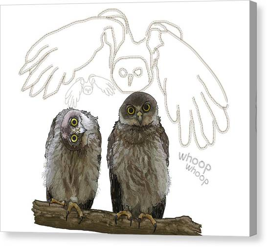 Canvas Print - O Is For Owl by Joan Stratton