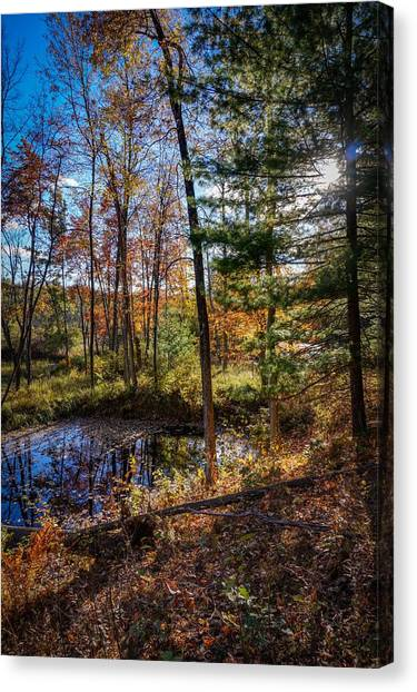 October Late Afternoon Canvas Print
