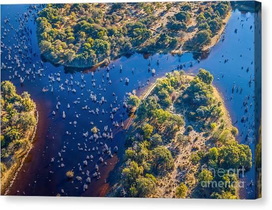 Delta Canvas Print - Okavango Delta Okavango Grassland Is by Vadim Petrakov