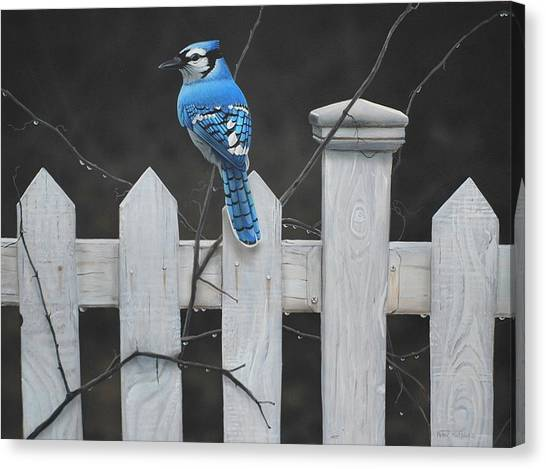 Old Picket Fence Canvas Print