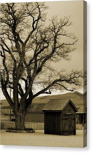 Old Shanty In Sepia Canvas Print